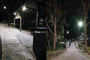 LED solar light for urban forest
